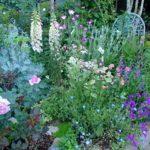 庭の朝と夕と 庭時間